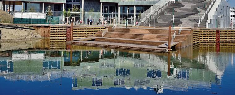Skolen i Sydhavnen er makker med Havhøst