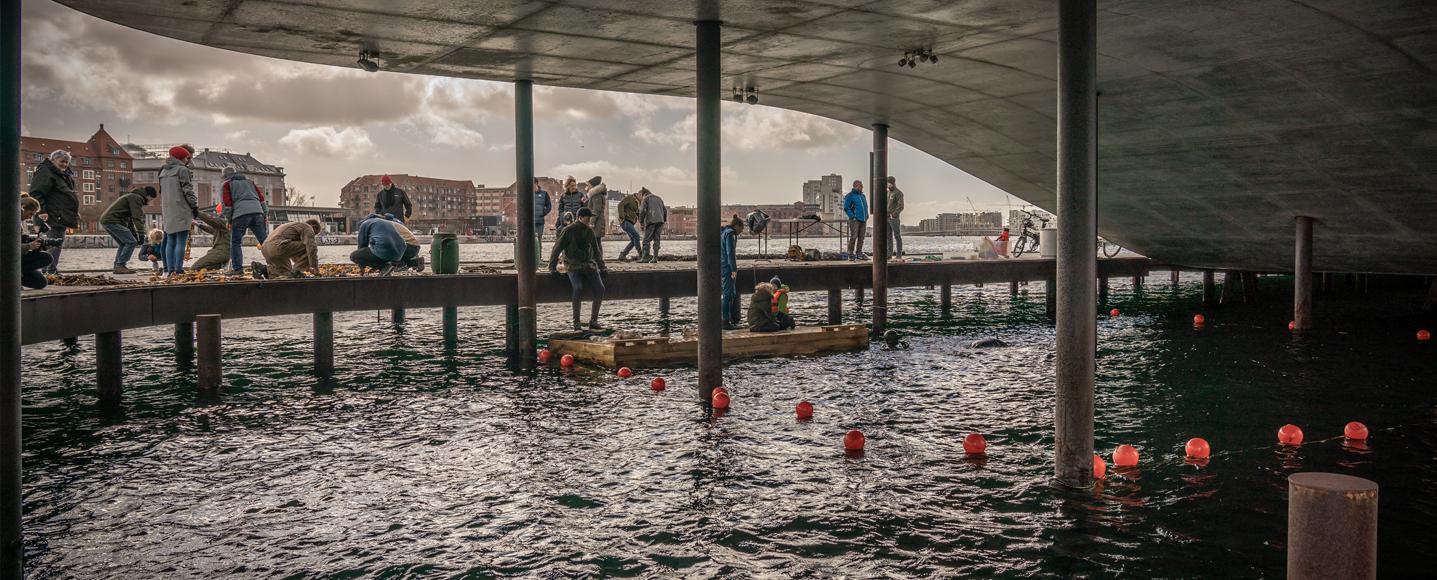 Arbejdsdag på Bølgemarken i København
