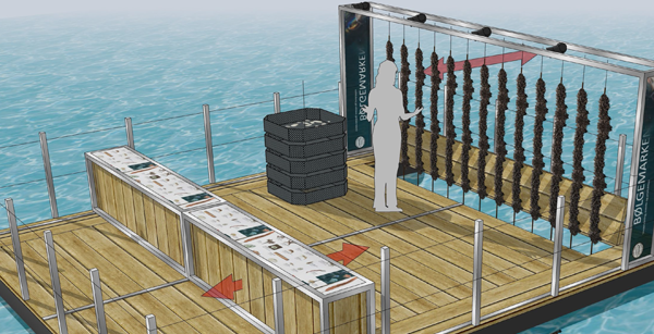 Ny Bølgemark er under udvikling i Havhøst
