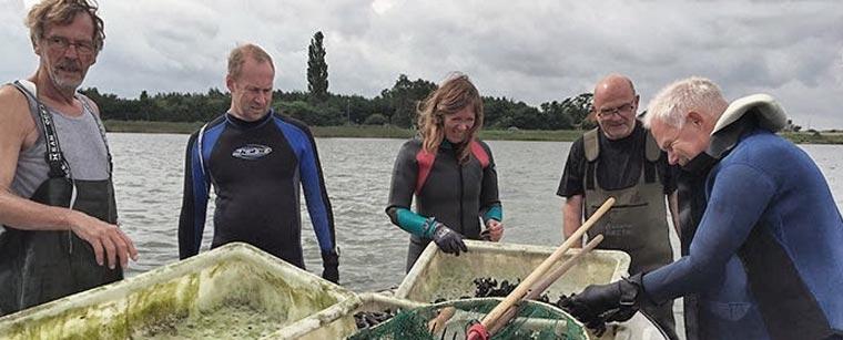 Arrangementet Kerteminde Maritime Haver på Fjordens Dag i Havhøsts efterårsprogram 2019