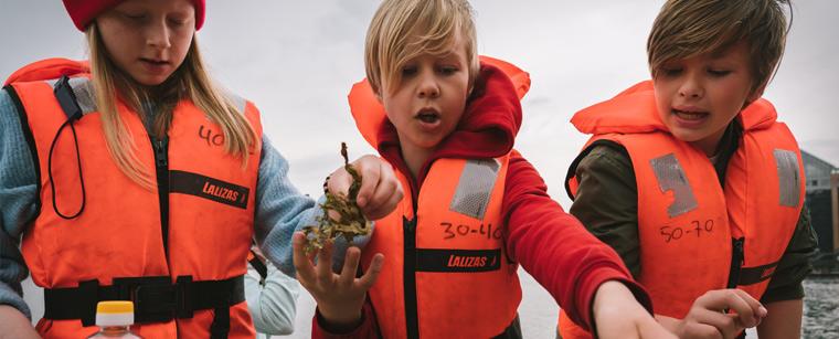 Arrangementet Smag på Havet i Havhøsts efterårsprogram 2019