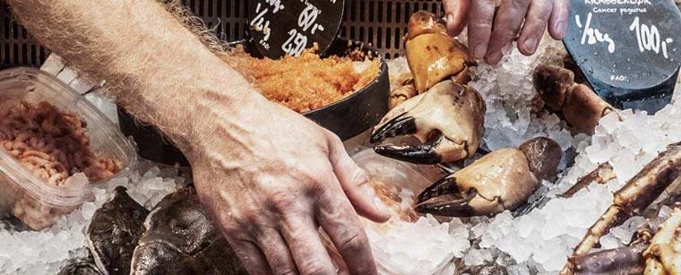Fiskerikajen er makker med Havhøst