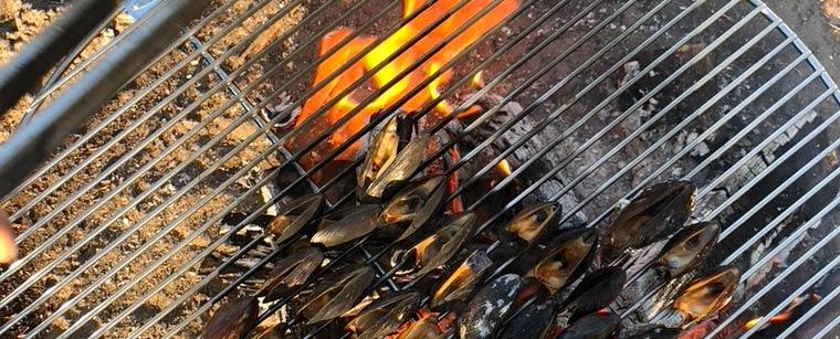Ild & vand: Blåmuslinger på bål